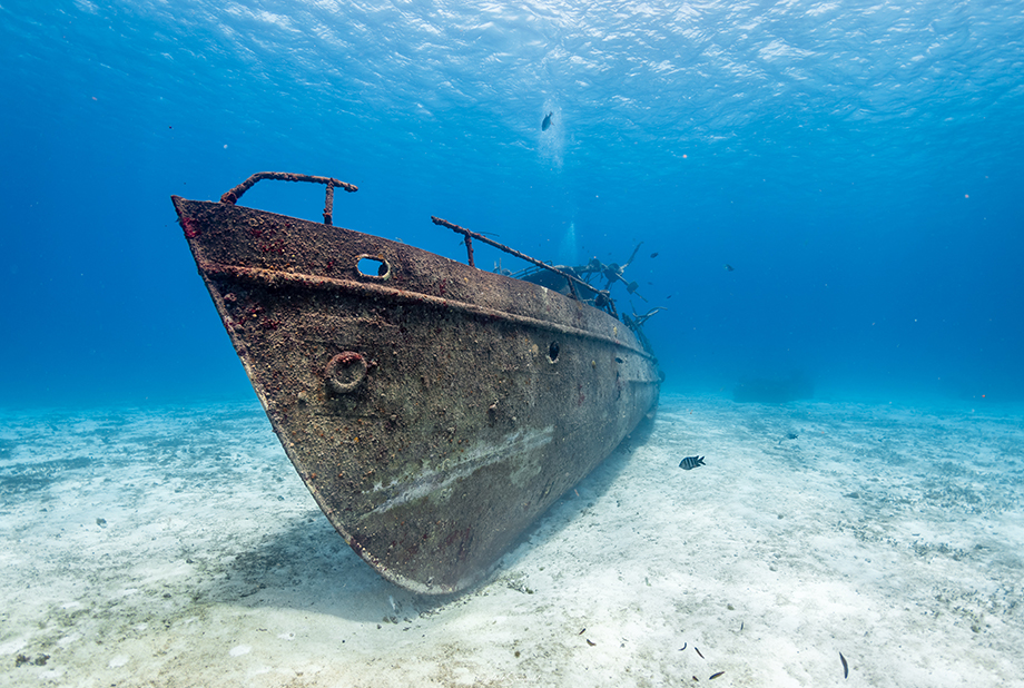 Wreck Diving in Mexico with Elite Divers International